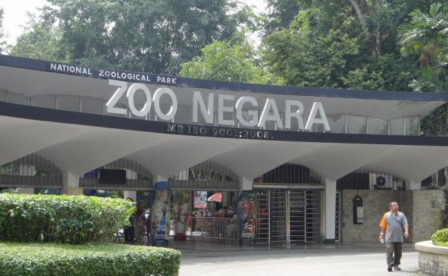 zoo_negara